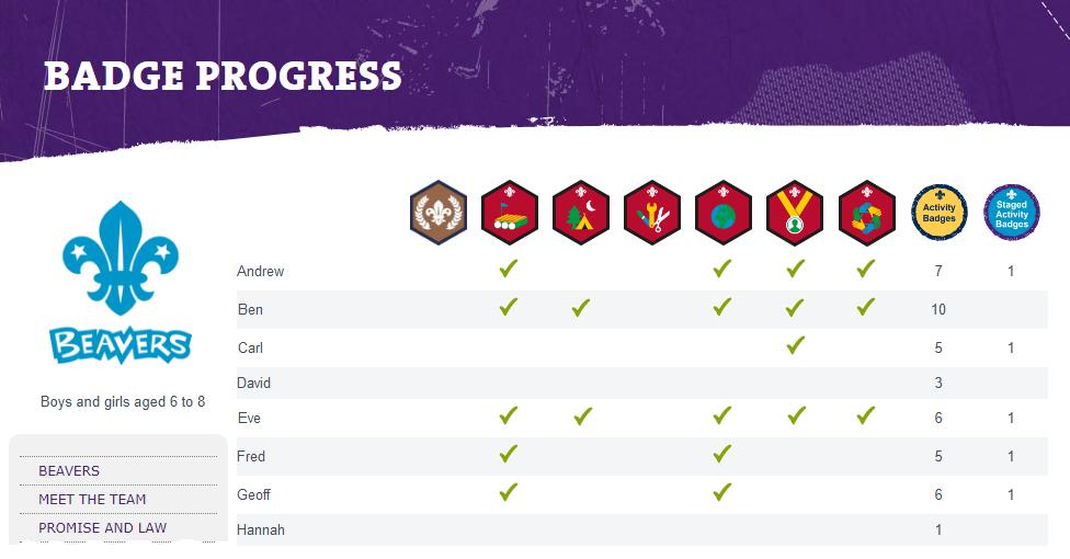 OSM Badge Progress